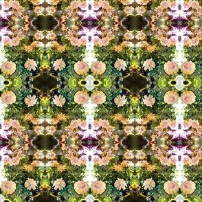 Blushing Beauty Kaleidoscope