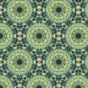 Flower Kaleidoscope 1