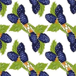 Blackberry triangles