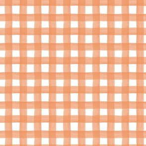 Coral Watercolor Gingham