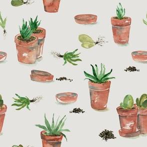 Plant party_05