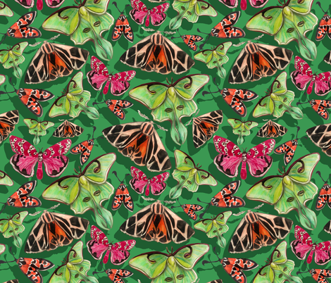 lime green moths fabric by ariellelouise on Spoonflower - custom fabric