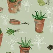 plant party_01