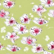 cherry blossom_04