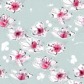 cherry blossom_03