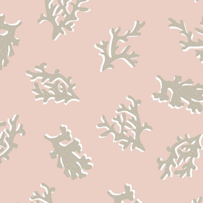 Coral Toss in Blush