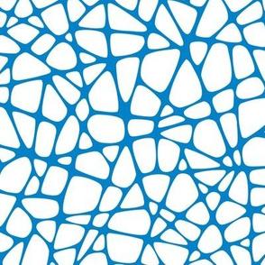 Webxotic blue
