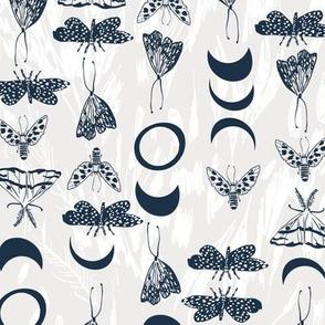 Deluna moths (navy) MED
