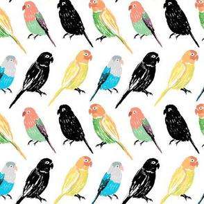 Parrot`s Party