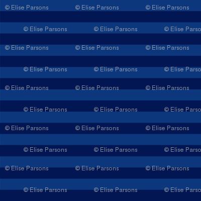 Flamingo Paisley Coordinate: Blue Stripe