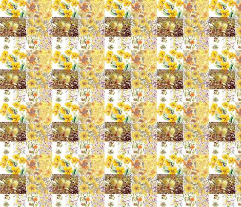 Yellows,senna bottle brush fabric by centralaustralian_wildflowerart on Spoonflower - custom fabric
