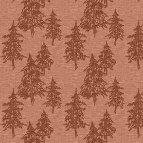 Small evergreen trees - rust