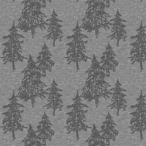 Small evergreen trees - charcoal