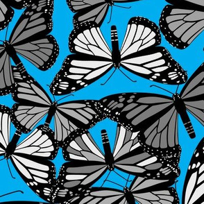 Butterflies on Aqua