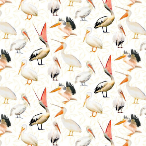 Watercolor Pelicans on White with fish background