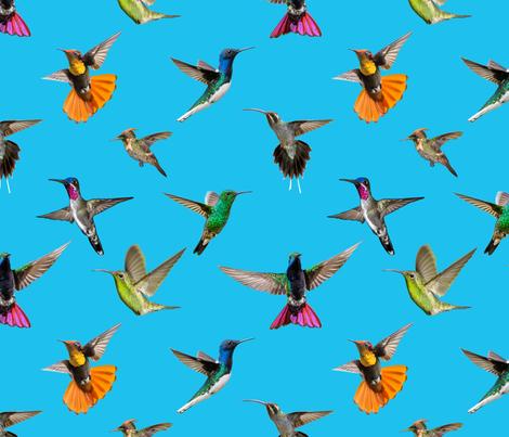 Multiple hummers Tobago blue fabric by landofthehummingbird on Spoonflower - custom fabric
