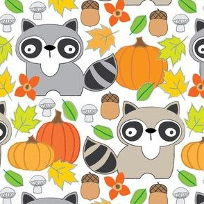 raccoons and pumpkins on white