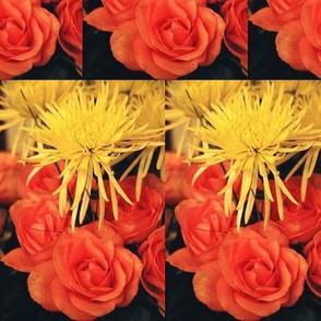 YellowMums OrangeRoses-LARGE-halfbrick