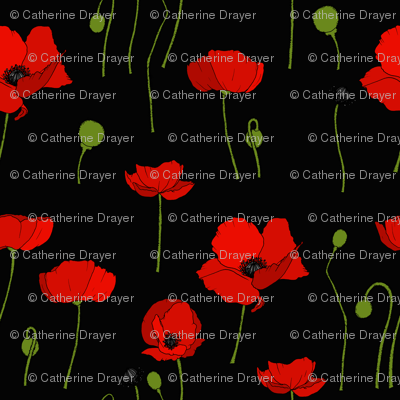 Poppies scatter black