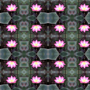 Balinese lotus blossom