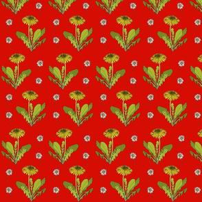 Dandelion repeat red
