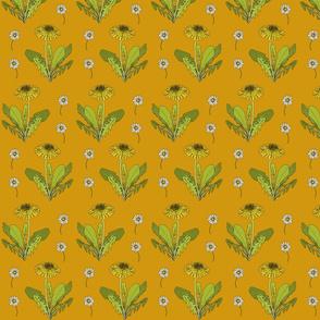 Dandelion repeat mustard