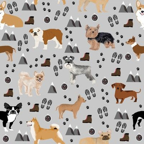 dogs hiking outdoors dog breed fabric grey