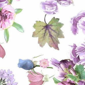 Begonias and Roses Purple