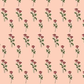 Roborose pink