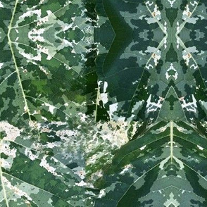 Green White Leaf Leaves Botanic Garden Camo _ Miss Chiff Designs