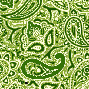 Persnickety Paisley _ Groovy Green _ Peacoquette Designs _ Copyright 2018