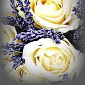 Lavender & Roses