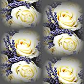 Lavender & Roses-stripe