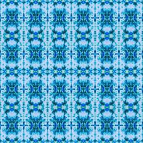 Blue Warshak
