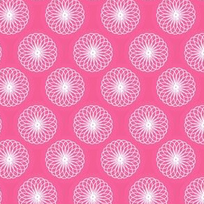 Spirograph chrysanthemum pink and white
