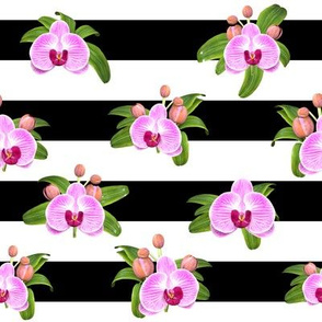 Elegant Stripes With Orchids