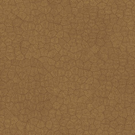 R0-new-petoskey3-summerbrown_shop_preview