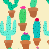 Cacti Collector