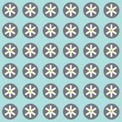 citron star circles