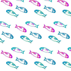 Tiny fish in magenta and light blue