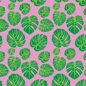 Monstera Leaf, Pink