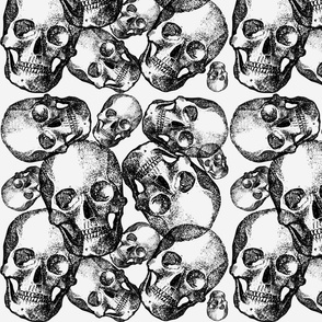 White large skulls