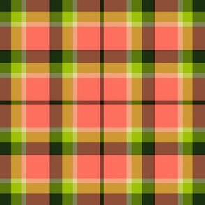 watermelonplaid