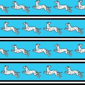 Running Dalmatian Stripe