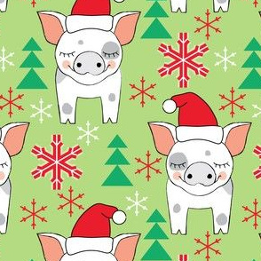 spotted christmas pigs