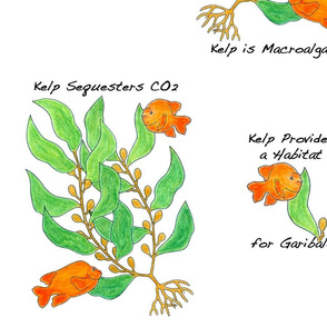 Sea Kelp and Garibaldi Ecosystem