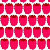 Rraspberry_shop_thumb