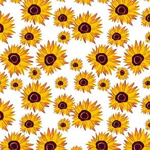 Sunflower pattern background.