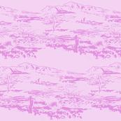 Western Landscapes pink