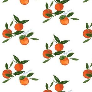 Pretty Clementine